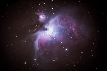 Orion Nebula, photographer Josh Palmer