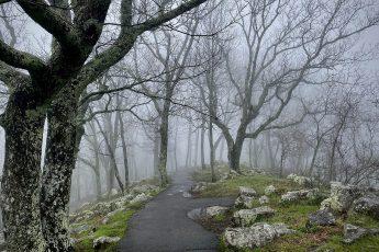 Foggy Kennesaw Mountain